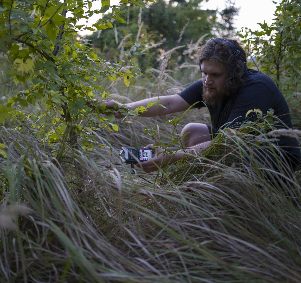 Na zdjęciu przedstawiono młodego, długowłosego i brodatego mężczyznę. Siedzi on w kucki w otoczeniu wysokich traw i krzewów. W prawej dłoni zapewne trzyma mikrofon, którym porusza zielone liście. W lewej trzyma dyktafon. Właśnie rejestruje odgłosy natury.